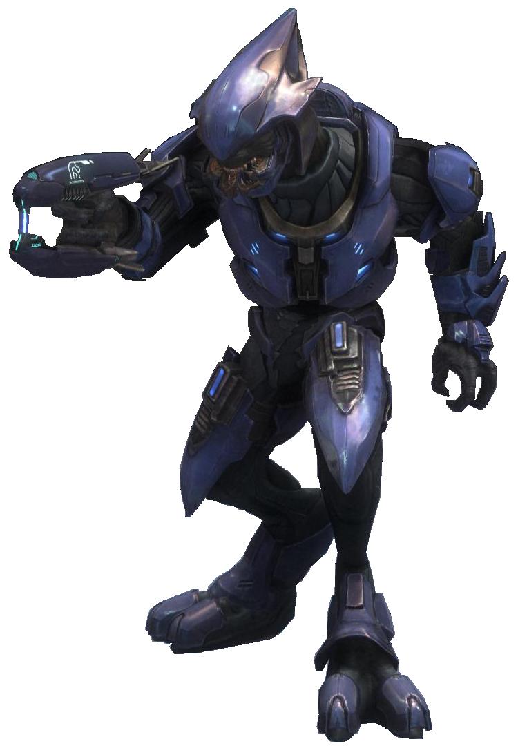 Sangheili - Halopedia, the Halo encyclopedia