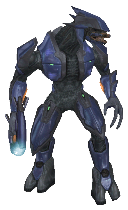 sangheili language Sangheili describes multiple dialects of a language spoken by the species of the same namethough the member species of the covenant had their own unique languages, an advanced dialect of sangheili, known as basic sangheili, came to serve as the lingua franca throughout the entire covenant empire.