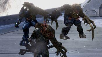 Flood combat form - Halopedia, the Halo encyclopedia