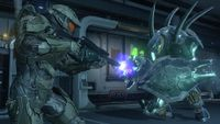 H4-Campaign-MasterChief-Vs-Hunter.jpg
