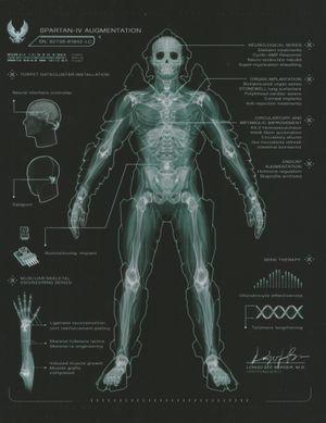 92738 61842 Lc Halopedia The Halo Encyclopedia