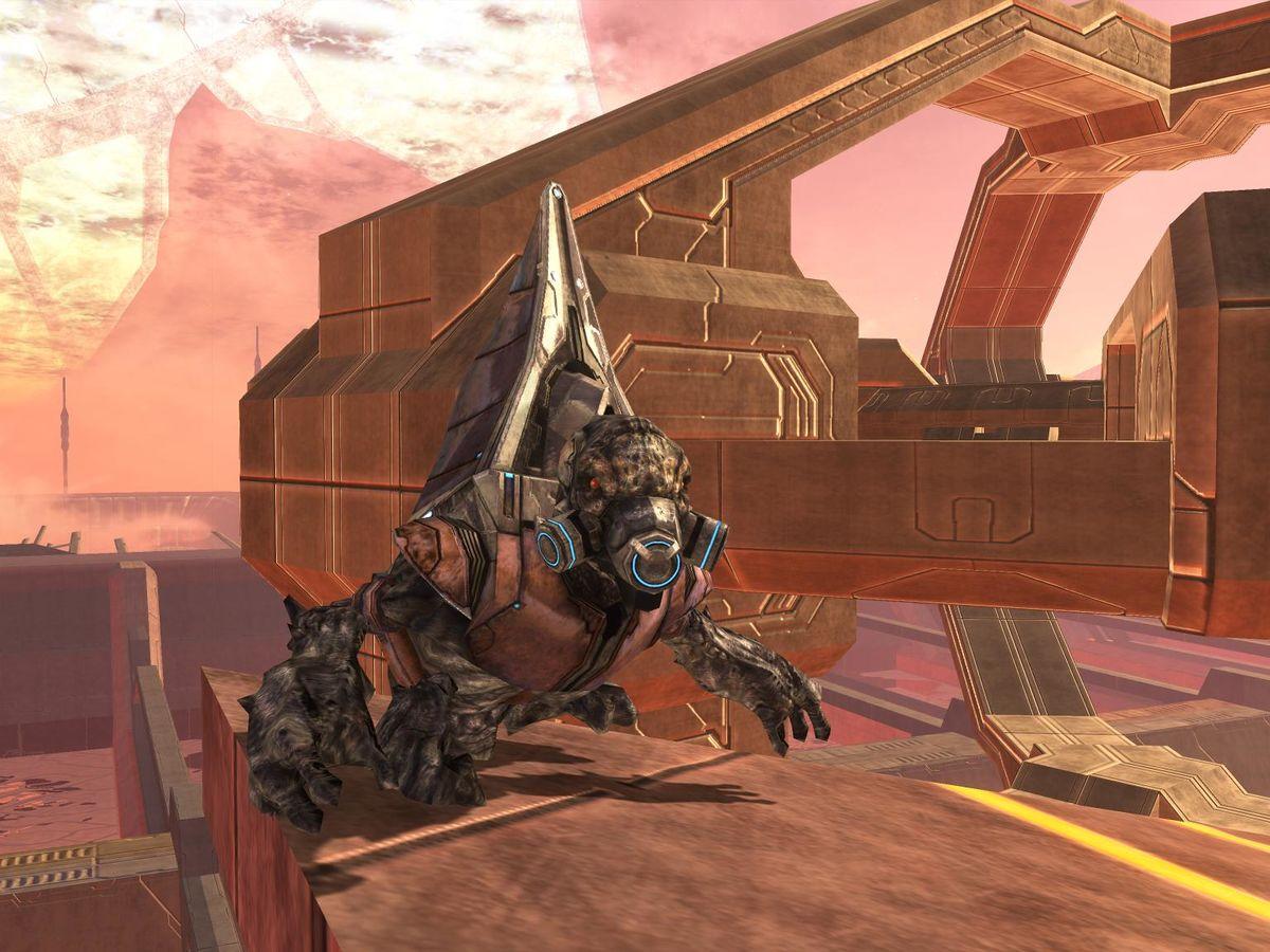 Final Grunt - Halopedia, the Halo encyclopedia