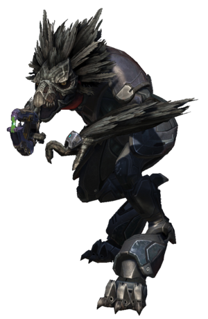 Halo Reach - Skirmisher.png