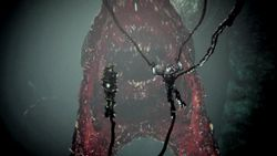 Gravemind Halopedia The Halo Encyclopedia