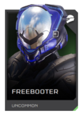 H5G REQ Helmets Freebooter Uncommon.png