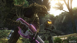Halo Arbiter Dies